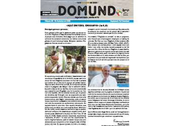 Suplement del Full Dominical n. 3684- Domund 2020